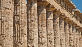 Paestum temple - Italy Royalty Free Stock Images