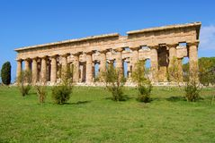 Paestum Temples. Details of temples in paestum salerno, italy Royalty Free Stock Photography