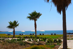 Pafos Royalty Free Stock Image