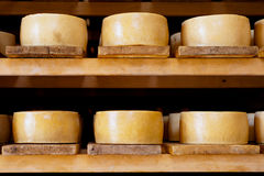 Pag cheese Royalty Free Stock Photo
