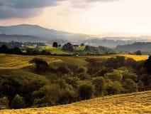 Paga o basque Imagem de Stock Royalty Free