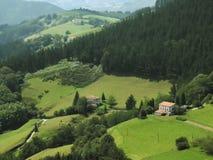 Paga o basque Foto de Stock Royalty Free