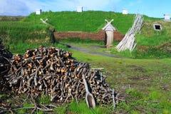 Pagamento de Viking imagem de stock royalty free