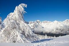 Paganella ski Royalty Free Stock Photos