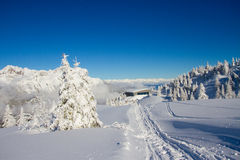 Paganella ski Royalty Free Stock Images