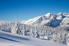 Paganella ski Stock Photos