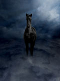 Pagasus Black Steed in Storm Clouds Royalty Free Stock Photo