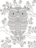 Page adulte de coloration avec le hibou magnifique Photos libres de droits