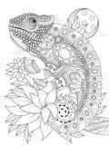 Page adulte de coloration de Chameleonb Images stock