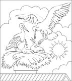 Page with black and white illustration of stork family in the nest for coloring. Vector image. Developing children skills for drawing and coloring Vector Illustration