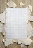Page blanche de carnet sur le fond d'un papier déchiré Images libres de droits