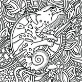 Page for color book with stylized chameleon sitting on a tree branch. Hand drawn sketch, doodle, zentangle. Stock Photos