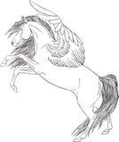 Page de coloration avec un Pegasus Photo stock