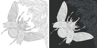 Page de coloration d'insecte illustration de vecteur