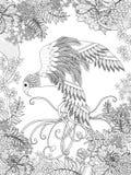 Page de coloration d'oiseau Photographie stock