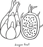 Page de coloration de fruit du dragon Art noir et blanc f de vecteur graphique Image stock