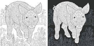 Page de coloration de porc illustration stock