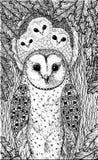 Page de coloration pour des adultes avec des hiboux sur le chêne Réaliste dedans illustration de vecteur