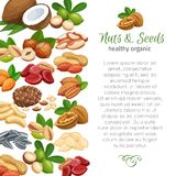 Nuts and seeds royalty free illustration