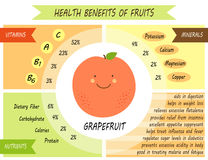 Page infographic mignonne des prestations-maladie des fruits illustration libre de droits