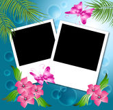 Page layout photo album. Page layout photo album with flowers and butterfly Stock Images