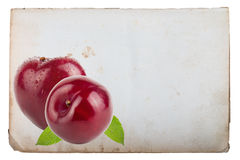Page of old book with fresh plum isolated on a white background Stock Photography