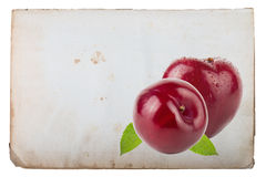 Page of old book with fresh plum on a white background Royalty Free Stock Photos