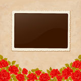Page of photo album. Vintage background with old paper, photoframe, and red roses. Royalty Free Stock Image