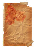 Page with Rose flower - vintage effect Stock Photos