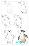 Page shows how to learn step by step to draw a penguin. Royalty Free Stock Images