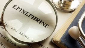 Page with title Epinephrine and book. royalty free stock photos