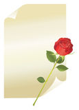 Page With Red Rose Stock Images