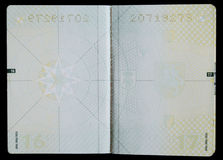 Pages blanc de passeport Photographie stock libre de droits