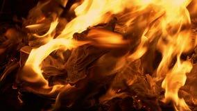 Pages brûlant en feu banque de vidéos