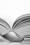Pages d'un livre images stock
