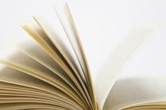 Pages d'un livre ouvert Images stock