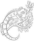 Pages de coloration L'iguane mignon se repose sur la branche d'arbre illustration stock