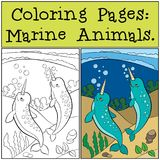 Pages de coloration : Marine Animals Bain mignon de deux petit narvals illustration stock