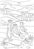 Pages de coloration Sourire mignon de trois petit meerkats illustration stock