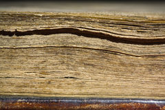 Pages in old book Stock Image