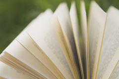 Pages. Of an open book Royalty Free Stock Image
