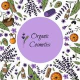 Pagina, cartolina, modello naturale, bio- cosmetici organici PA della mano illustrazione di stock