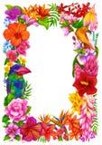 Pagina, certificato o diploma tropicale di completamento Modello di progettazione del fiore illustrazione vettoriale