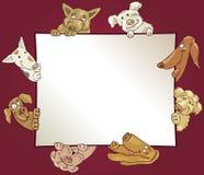 Pagina con i cani Immagini Stock