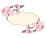 Pagina con i rami dei fiori di ciliegia Immagine Stock Libera da Diritti