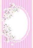 Pagina con il fiore di ciliegia royalty illustrazione gratis