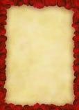Pagina con il papavero rosso Fotografie Stock