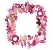 Pagina con le conchiglie, i fiori secchi, i ramoscelli, le foglie ed i petali isolati su fondo bianco Riposandosi, vista sopraele Immagini Stock Libere da Diritti