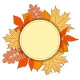 Pagina con le foglie di autunno Immagini Stock Libere da Diritti