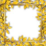 Pagina con le foglie di autunno gialle Immagini Stock